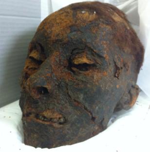 Tête momifiée, Morlaix, Musée des Jacobins